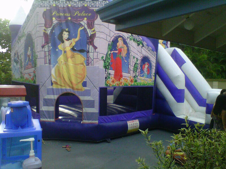 princess-bouncy-slide